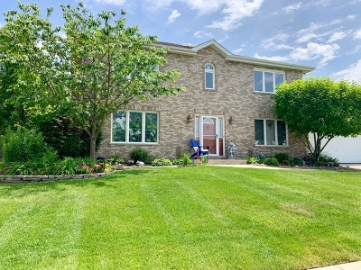 Tinley Park IL Single Family Home New: $379,000