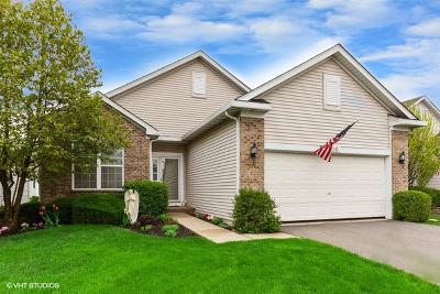 Romeoville Single Family Home For Sale: 706 South Mecosta Lane