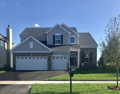 Plainfield Single Family Home For Sale: 25119 West Zoumar Drive