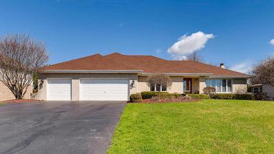 Lemont Single Family Home For Sale: 13720 Dixon Way