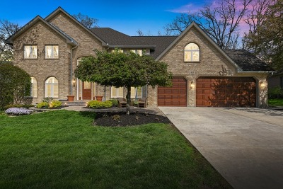 Bartlett Single Family Home For Sale: 431 Timber Ridge Drive