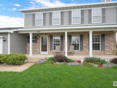 Oswego Single Family Home New: 423 Barnaby Drive