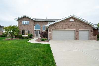 Tinley Park Single Family Home For Sale: 8659 Monaghan Drive