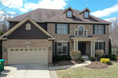 Plainfield Single Family Home For Sale: 22642 Fox Trail Lane