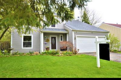 Algonquin Single Family Home For Sale: 1405 Greenridge Avenue