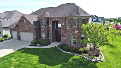 Bolingbrook Single Family Home For Sale: 14 Raes Creek Court