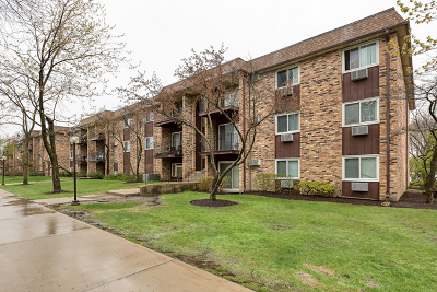 Hoffman Estates Condo/Townhouse For Sale: 680 Hill Drive #5-313