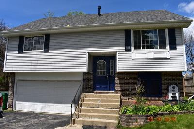Wauconda Single Family Home For Sale: 129 Oaks Avenue