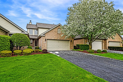 Tinley Park Condo/Townhouse Contingent: 33 Corinth Drive