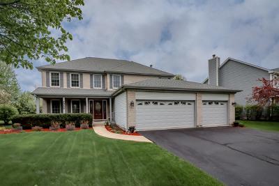 Plainfield Single Family Home For Sale: 4955 Vermette Circle