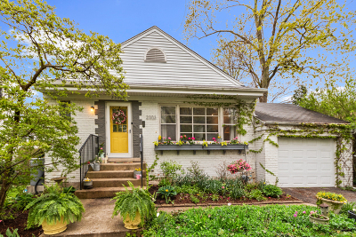 Flossmoor Single Family Home For Sale: 2303 Hutchison Road