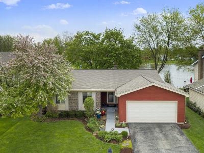 Naperville Single Family Home For Sale: 5s741 Malibu Lane