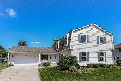 Palatine Single Family Home For Sale: 747 South Middleton Avenue
