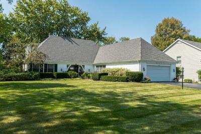 Barrington Single Family Home For Sale: 1141 Oak Ridge Circle
