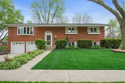Palatine Single Family Home New: 261 North Lytle Drive