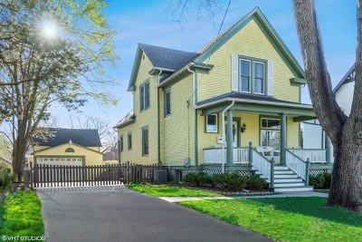 Palatine Single Family Home For Sale: 305 North Plum Grove Road