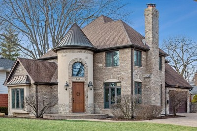 Hinsdale Single Family Home For Sale: 519 The Lane