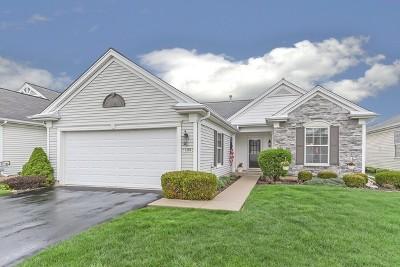 Del Webb Sun City Single Family Home For Sale: 12280 Songbird Lane