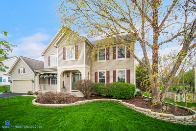 West Dundee Single Family Home For Sale: 1372 Angle Tarn