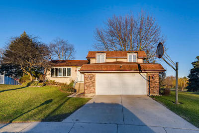 Cook County Single Family Home Re-Activated: 1289 West New Britton Drive