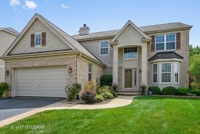 Palatine Single Family Home For Sale: 1080 North Penny Lane