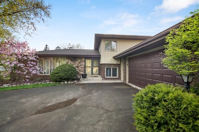 Homer Glen Single Family Home Contingent: 16620 South Spaniel Drive