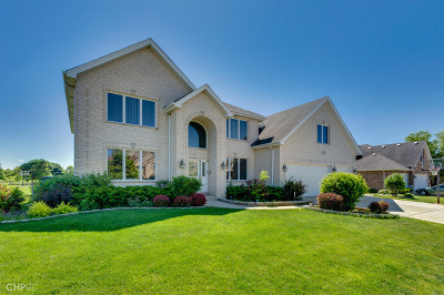 Roselle Single Family Home For Sale: 47 North Andover Drive North