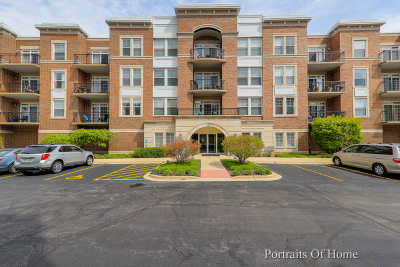 Palatine Condo/Townhouse For Sale: 435 West Wood Street #411A