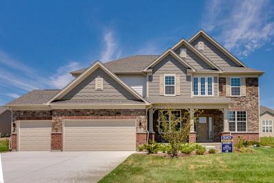 Plainfield Single Family Home For Sale: 15718 Portage Lane