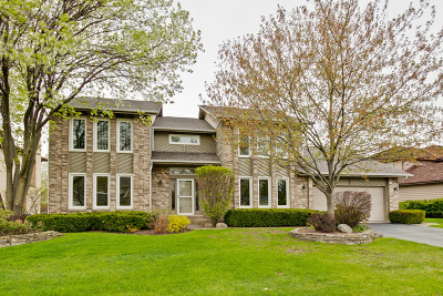 Buffalo Grove Single Family Home For Sale: 742 Joel Lane
