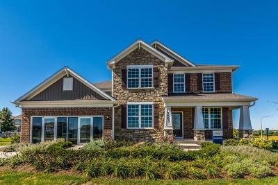 Plainfield Single Family Home For Sale: 25215 Parkside Drive