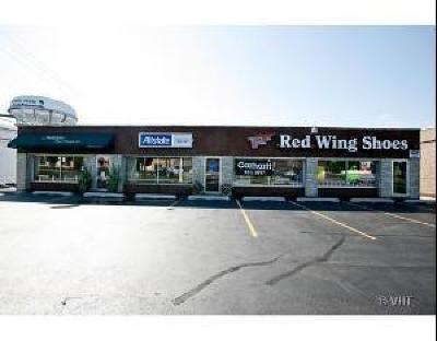 Du Page County Commercial For Sale: 1707 Ogden Avenue