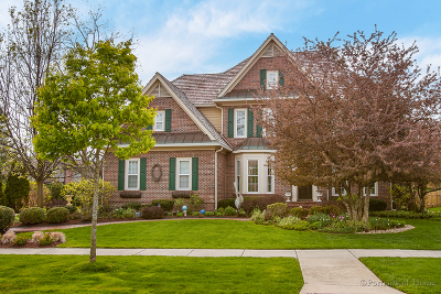 Glen Ellyn Single Family Home For Sale: 910 Newton Avenue