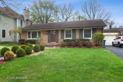 Downers Grove Single Family Home For Sale: 819 Franklin Street