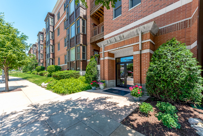 Downers Grove Condo/Townhouse For Sale: 930 Curtiss Street #410