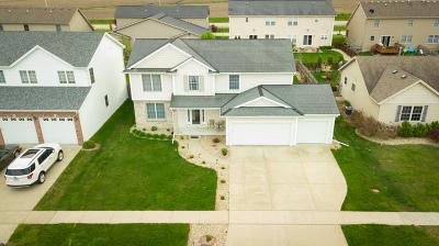 Eagles Landing Single Family Home Price Change: 3055 Blue Heron Road