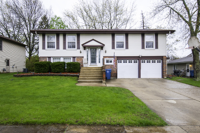 Bloomingdale Single Family Home For Sale: 214 Freeport Drive