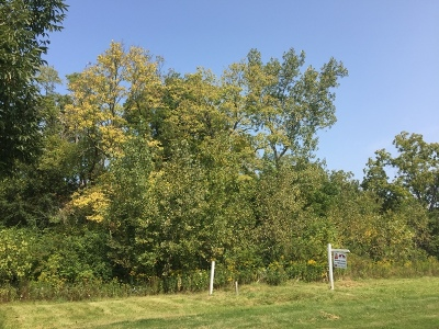 New Lenox Residential Lots & Land For Sale: 1193 Georgias Way