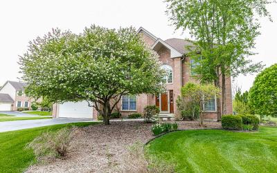 Bolingbrook Single Family Home For Sale: 1800 Marne Road