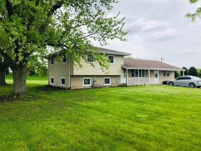 Minooka, Channahon Single Family Home For Sale: 1370 Holt Road
