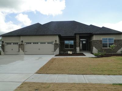 Plainfield Single Family Home For Sale: 15712 Brookshore Drive