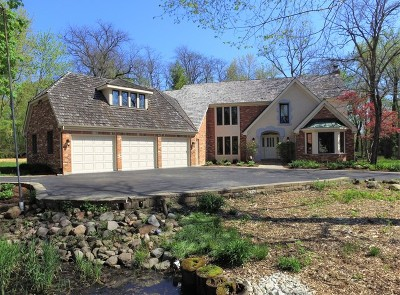 Mundelein Single Family Home For Sale: 27504 North Chevy Chase Road