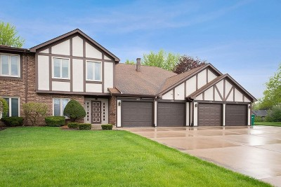 Joliet Condo/Townhouse For Sale: 639 Big Timber Drive #3D