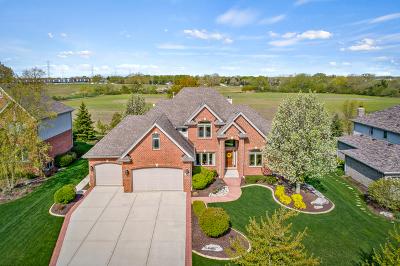 Frankfort Single Family Home For Sale: 21824 Morning Dove Lane