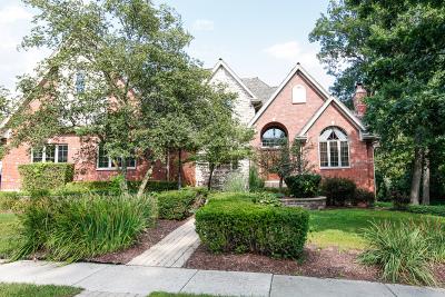 Homer Glen Single Family Home For Sale: 16125 Wildwood Lane