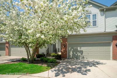 Streamwood Condo/Townhouse For Sale: 1499 Yellowstone Drive