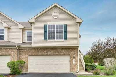 Bartlett IL Condo/Townhouse For Sale: $275,000