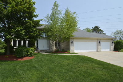 Buffalo Grove Single Family Home For Sale: 1987 Wilshire Court