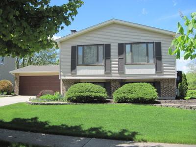 Bolingbrook Single Family Home For Sale: 665 Gannet Lane