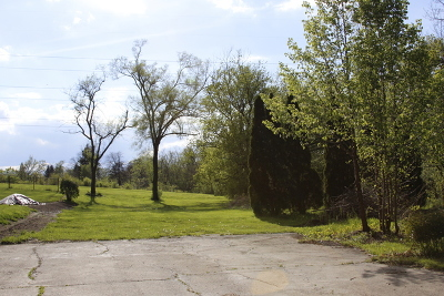 Lemont Residential Lots & Land For Sale: 11320 Woodlawn Avenue